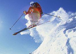 Vos skis